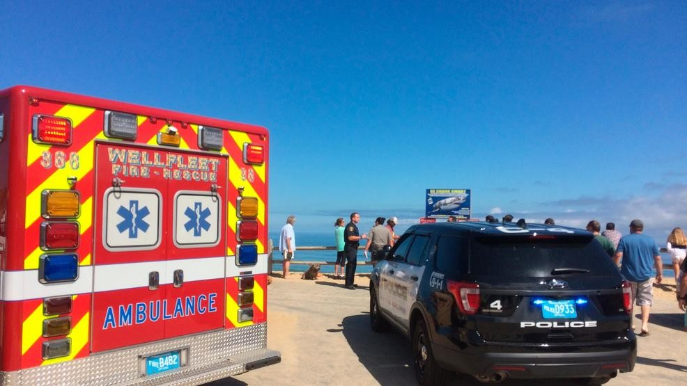 Police: Man dies after shark attack off Cape Cod | KRNV